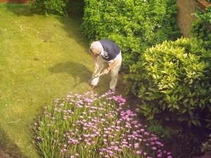 1280px-Gardening